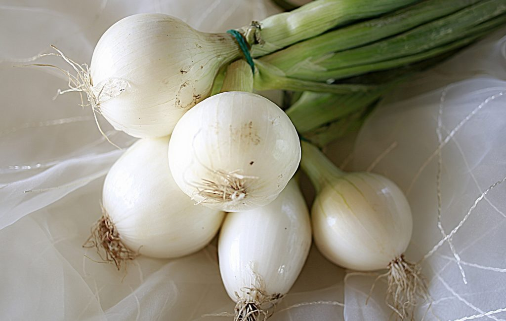 fall onions