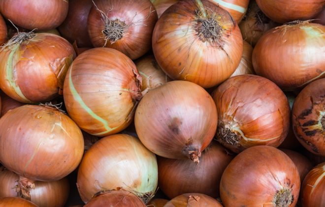 growing onions in containers