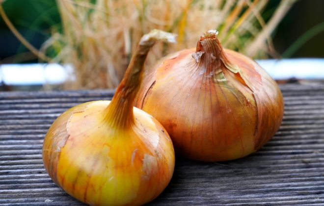 weed free onion patch